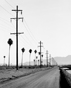 Telephone Poles and Palms